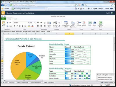 office365_excelwebapp